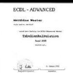Excel ECDL